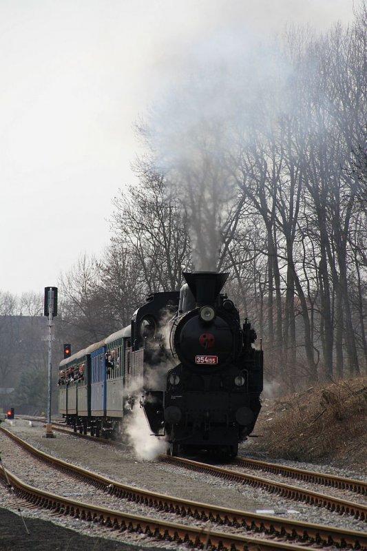 IMG_7691-Trebivlice-ausfahrender-Dampfsonderzug.JPG
