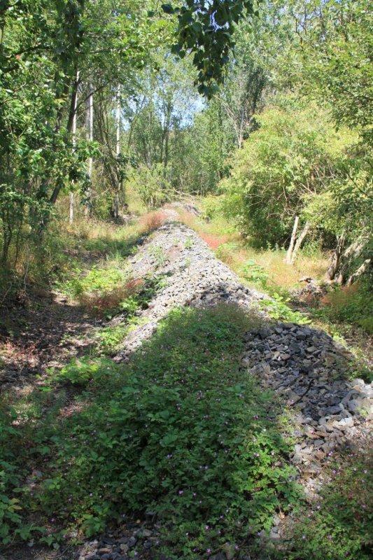 IMG_8856-Dul-Perun-Anschlussbahn-Schotter.JPG