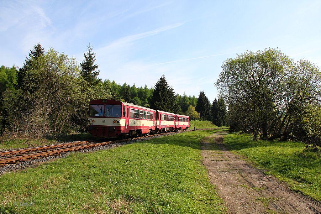 IMG_9157-Triebwagenzug-Mikulov-Nove-Mesto.JPG