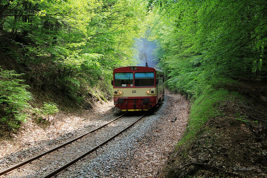 IMG_9175-Triebwagenzug.JPG