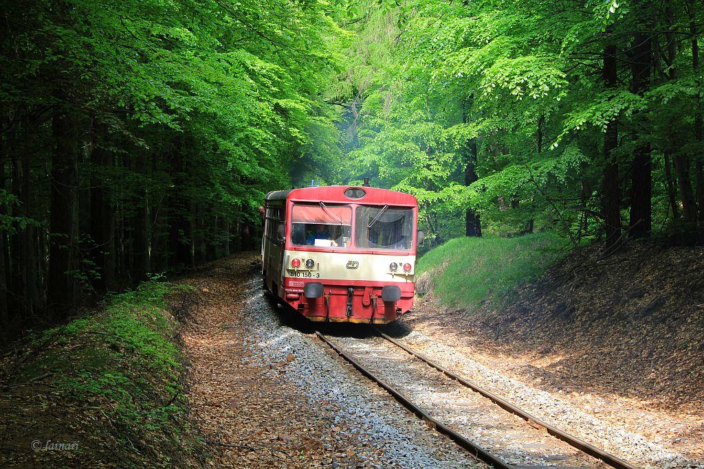IMG_9176-Triebwagenzug.JPG