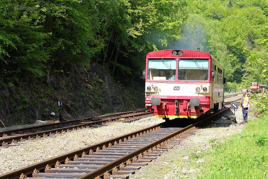IMG_9188-Triebwagenzug-Dubi.JPG